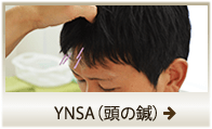 YNSA(頭の鍼)